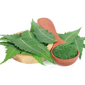 Mamaearth tea tree face scrub with Neem