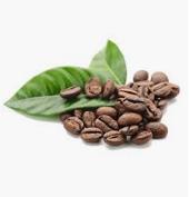 Coco Intense Skin Awakening Kit with coffee